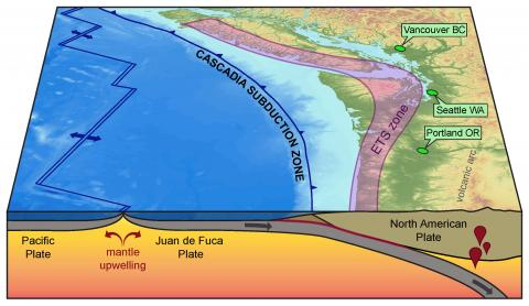 graphical illustration of the Cascadia subduction zone